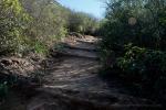 Trail to Mountain