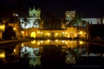The pond in Balboa Park at night