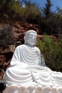 Buddha On The Mountain