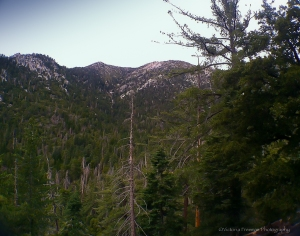View from Devils Slide