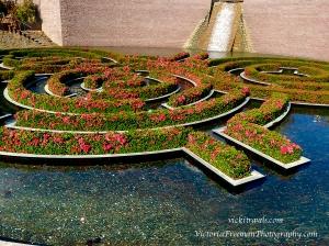 Close up of flower maze